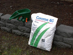 Cassaron Pre Emergence, 