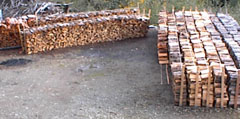 Winter Firewood